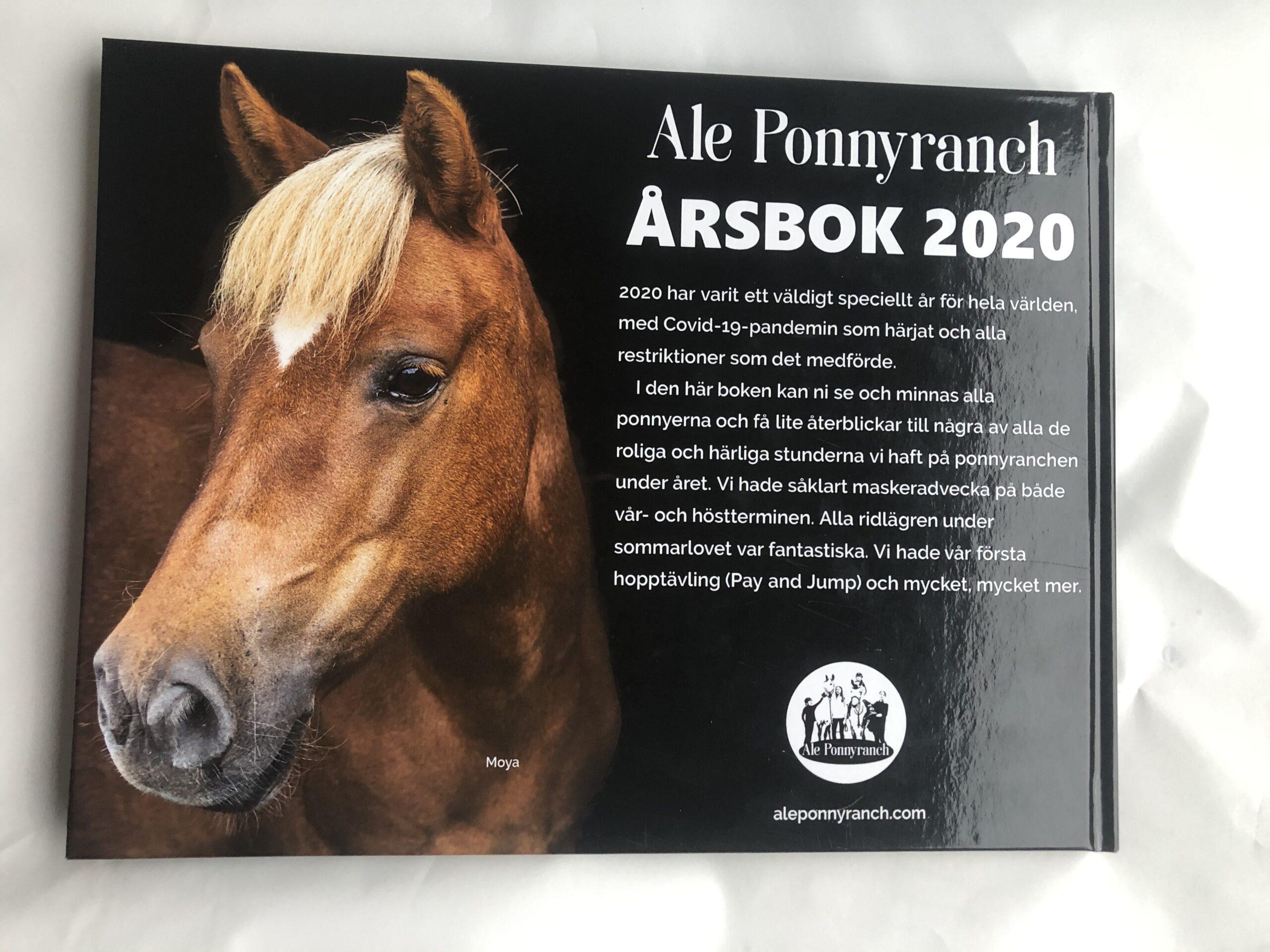 Baksida årsbok 2020