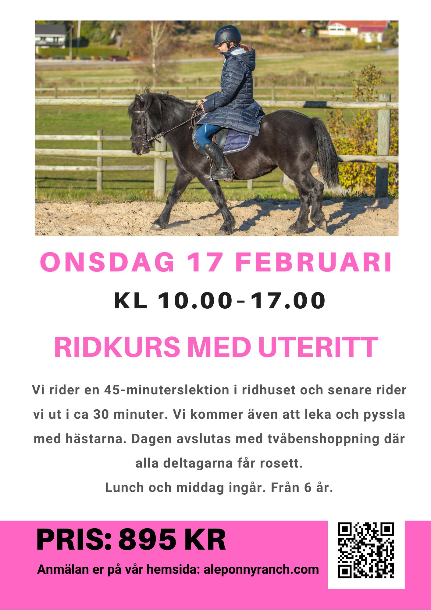 Onsdag 17 februari, 2021 (sportlovet) kl 10.00-17.00